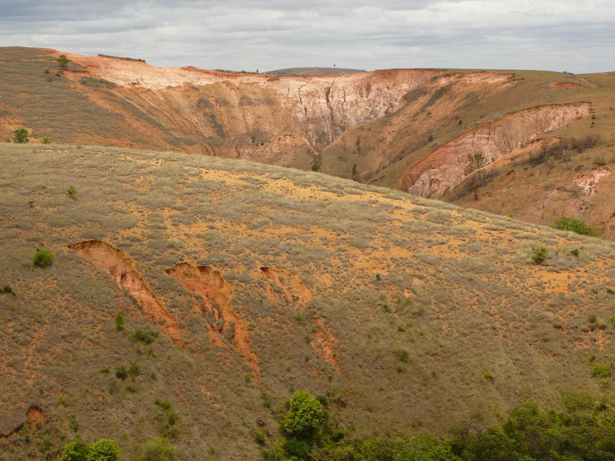 Much of Madagascar's high plateau is highly degraded, rain runs off quickly often causing deep erosion channels